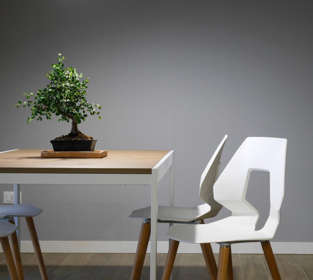 freelance bonsai