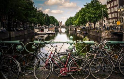 Amsterdam freelance