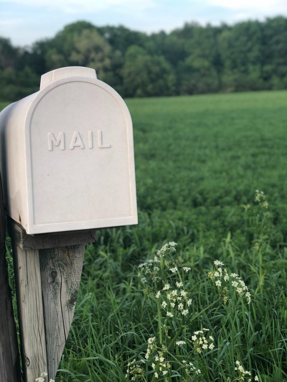 freelance mailing